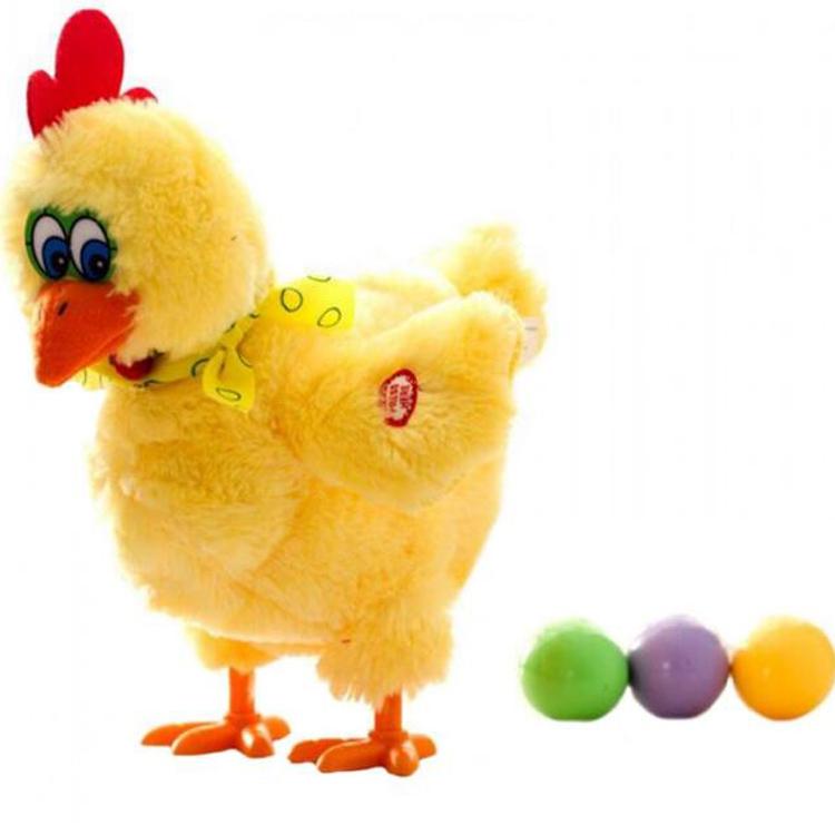 תרנגולת מטילה ביצים