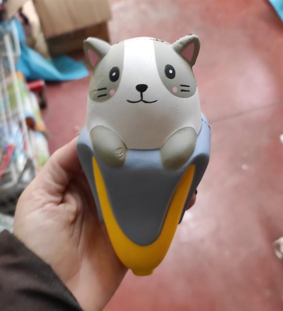 סקוושי חתול