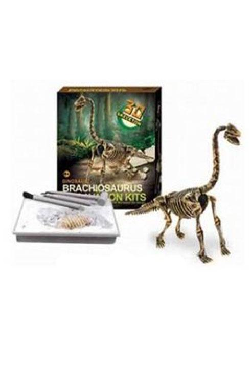 ערכת ארכיאולוגיה  דינוזאורים דגם 3